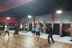 Tactical-Martial-Arts-class-1