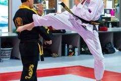 Tactical-Martial-Arts-kicka